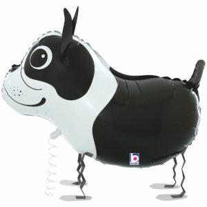 Ходячий шар из фольги Собачка Бостон-терьер